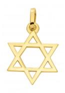 hanger Davids ster goud
